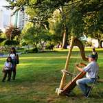 Harp in the Park on a summer evening