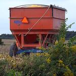 Full Harvest
