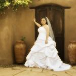 Horizontal Bridal Portrait