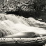 Bear Swamp Creek