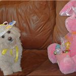 In Her Easter Bonnet