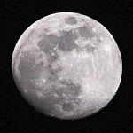 """Full """"Wolf""""Moon"""