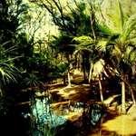 Jurassic Park New Zealand