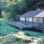 Lake Madrone
