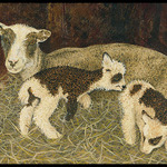 Aphrodite & Lambs