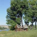 Barn in the Cottonwoods