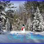 December in Maine_07