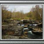 Looking upstream along the Neversink River