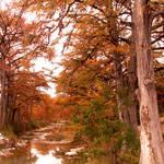 Vanderpool, Texas