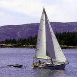 Maine Sailing