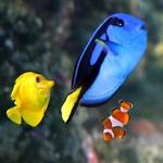 Nemo 'n' Friends