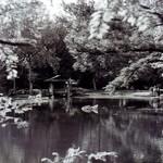 Maymont Park - Japanese Garden