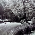 Maymont Park - Solitude