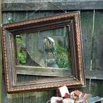 The Garden Mirror