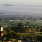 A Misty Auckland