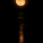 Ocean Moonrise