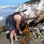 My beach comber