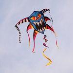 One Eyed Kite