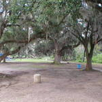 City Park Oaks