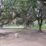 City Park Oaks