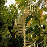 Palmhouse Spiral ..