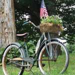 Patriotic Schwinn Bike