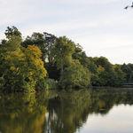 Peaceful autumnal lake