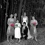 Bridal Party in Bamboo