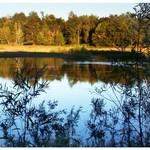 Gravel Pit Pond