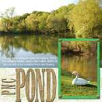 PNC Pond