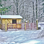 Pony Shed w/Topaz