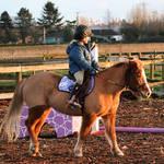 Pony Ride at Sunset