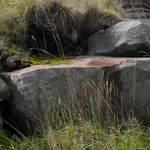 Quarry Rocks