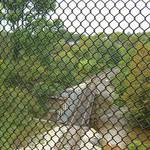 Gwynns Fall Trail