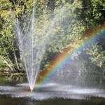 Catching a Rainbow & Fountain Star Design