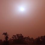 Red Sandstorm in Sydney 09