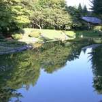 Reflections Blue at Nitobe Gardens