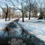 Winter reflections (1)