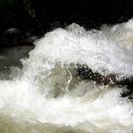 Rapids of Big Cottonwood