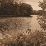 Summer River Sepia