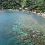 Roatan Reef