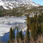RockCreek, Eastern Sierras