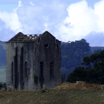 Ruins at Waihi