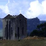 Ruins at Waihi