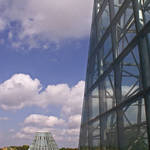 San Antonio Botanical Garden 3