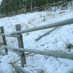 Frozen Fence