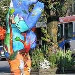 Spirit Bear on a Vancouver Sidewalk