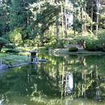 Still Waters - Nitobe Gardens