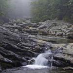 Stream in Fog