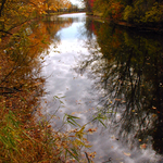 Fall Reflections 2